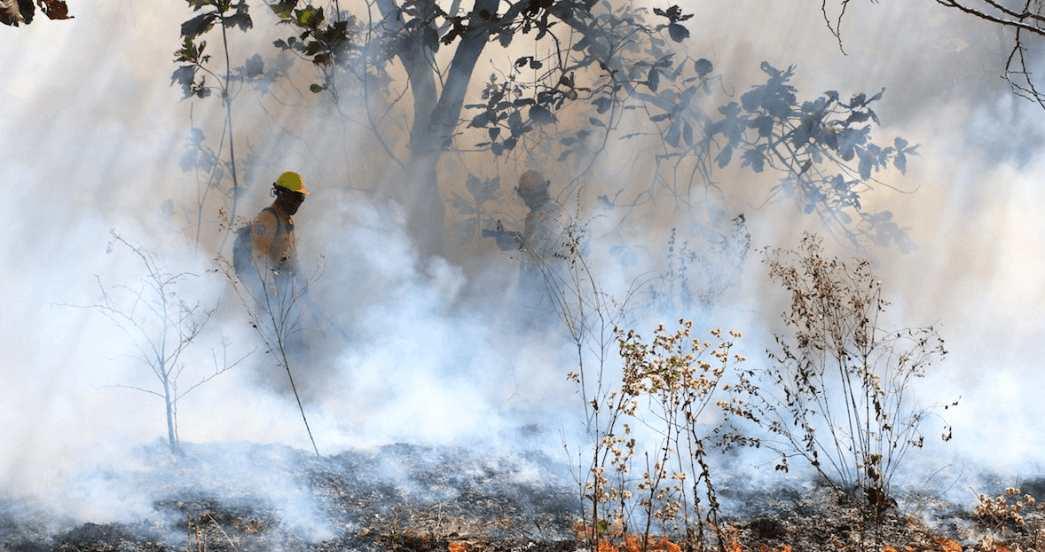 Siguen incendios en México, analizan bonos catastróficos