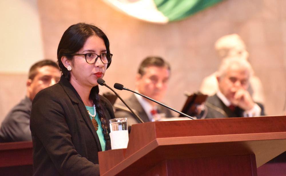 Propone Elisa Zepeda reforma a la Ley de salud de Oaxaca  para garantizar el aborto por violación