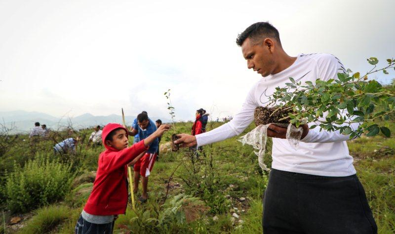 Alebrijes de Oaxaca se suma a campaña de reforestación