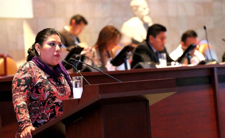 Oaxaqueñas encabezan 24 de los 417 municipios indígenas; pide Diputada a IEEPCO garantizar paridad en las elecciones