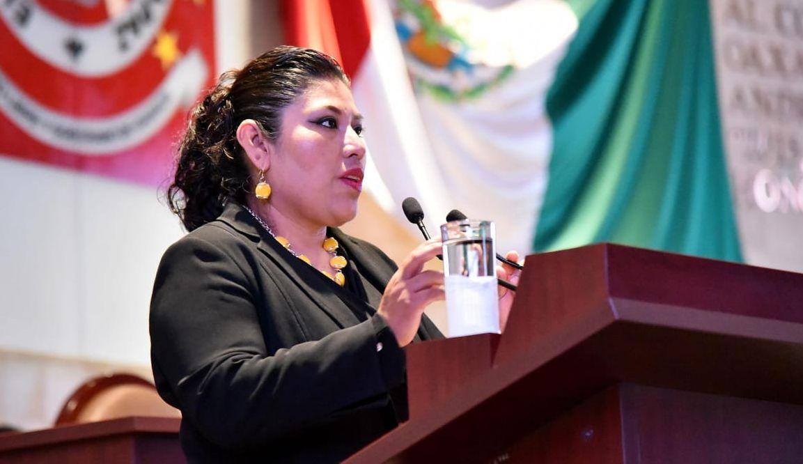 Pide Diputada destitución de Ana Vásquez Colmenares de la SMO, acusa analfabetismo de género