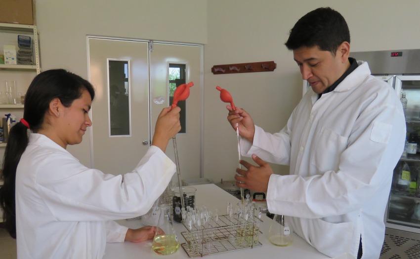La UNSIJ realiza investigación con microorganismos para remediar la contaminación ambiental