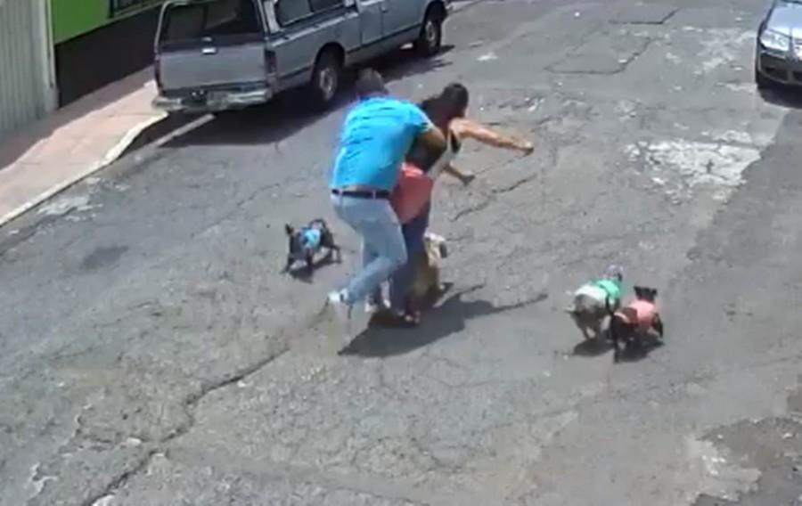 'Taclea' a mujer que paseaba a su perro en la Miguel Hidalgo