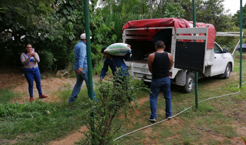 Pone en marcha Sedapa la rehabilitación y modernización de viveros El Tequio