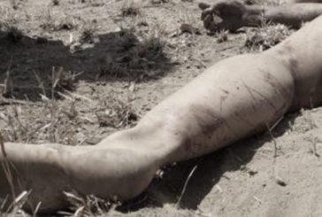 Suman 127 feminicidios en Oaxaca durante 2019