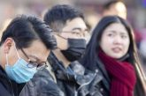 OMS estudia si declarar emergencia internacional por coronavirus