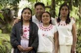 Atención eficiente a población indígena, prioridad del gobierno de la ciudad: Oswaldo García