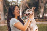 ¿Por qué tu perro se emociona cuando llegas a casa?