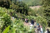 Fallecen dos personas por deslizamiento de ladera a causa de lluvias en Huautla, Oaxaca
