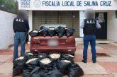 Aseguran 24 mil huevos de tortuga en operativo realizado en el Istmo de Tehuantepec, Oaxaca