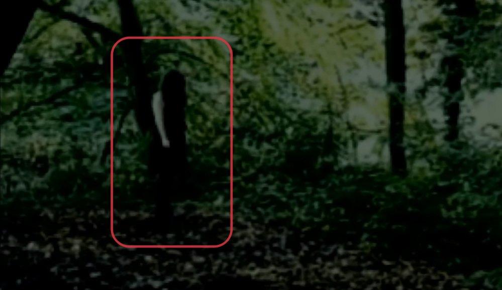 Captan supuesta 'niña fantasma de ojos negros' en un bosque