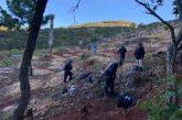 Fiscalía de Oaxaca localiza tres cuerpos sin vida al interior de una cueva en San Miguel Coatlán