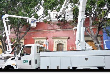 Coordinarán Ayuntamiento de Oaxaca y CFE poda ordenada y correcta de arbolado urbano