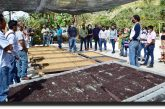 Productores de Pluma Hidalgo y municipios aledaños son capacitados para producir Cafés de Especialidad