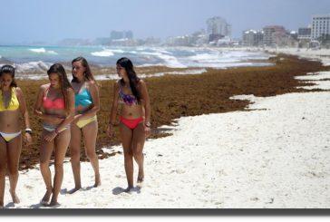 Desviaron 96 MDP del Consejo de Promoción Turística en administración de EPN
