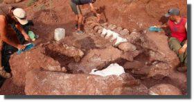 Encuentran un titanosaurio de 140 millones de años, el más antiguo hasta ahora