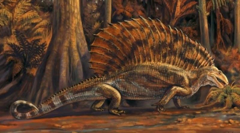 Fósil otorga 100 millones de años adicionales de comprensión de la evolución herbívora