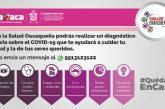 """""""Salud Oaxaqueña"""", herramienta digital para informar sobre el COVID-19"""