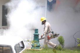 México suma más de tres mil casos de dengue y 11 muertes