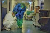 Otras pandemias volverán a aparecer, de continuar el daño al ambiente