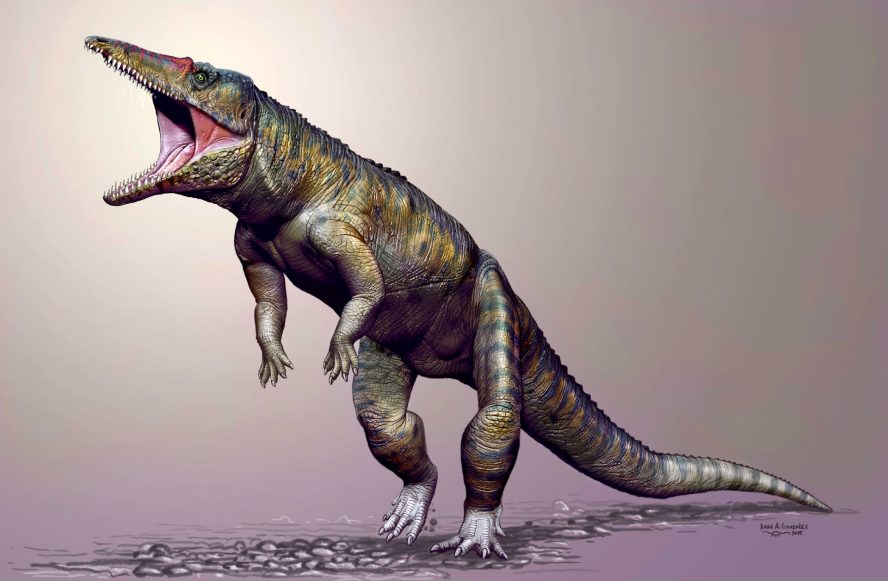 """Encuentran los restos de un """"mini Godzilla"""" que vivió hace 100 ..."""