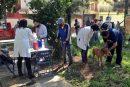 Oaxaca cumple 20 años sin Rabia Humana por mordedura de perro: SSO