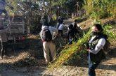 En Donají, Ayuntamiento de Oaxaca y ciudadanía limpian espacios de uso común