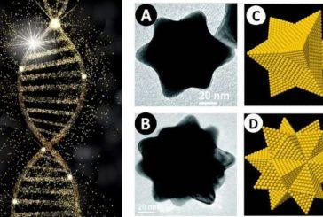 Científicos mexicanos usan nanopartículas de oro para eliminar células cancerosas