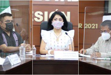 Vulneró funcionario del Congreso del Estado derecho de diputada: TEEO
